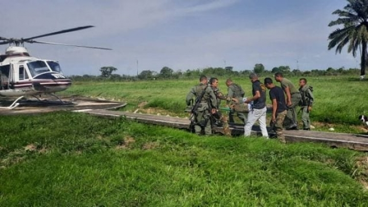 continúan los enfrentamiento de las FANB y las FARC en el Estado Apure.-